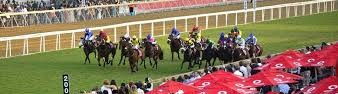 2019-01-13 : Greyville replays